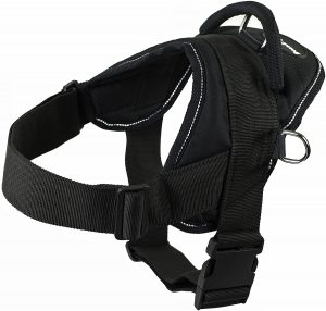 best harness for French Bulldog puppy