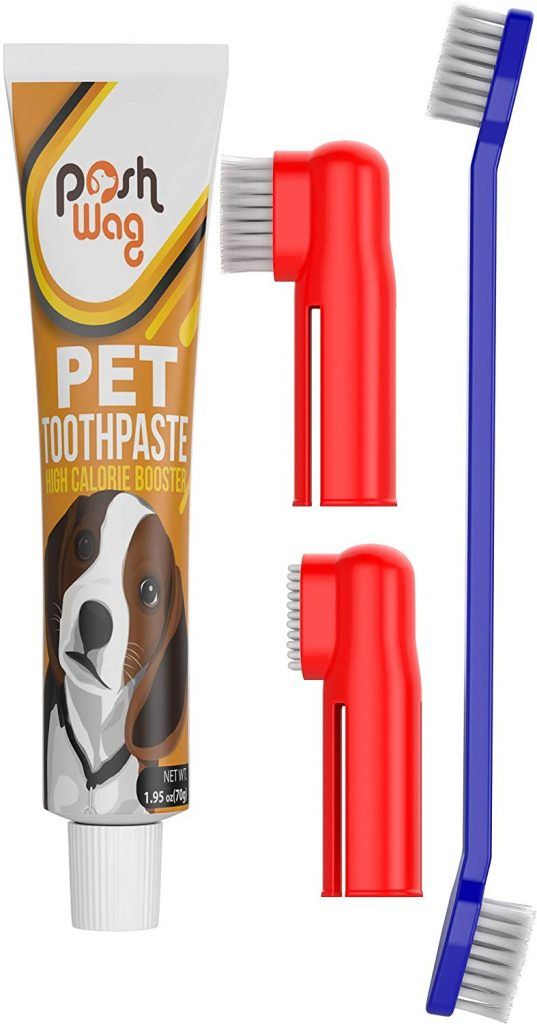 Best Toothpaste For French Bulldog