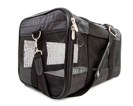 Best Airline Carrier for French Bulldog